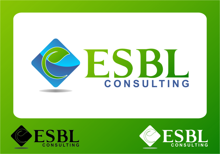 Logo Design by RoSyid Rono-Rene On Java - Entry No. 61 in the Logo Design Contest EBSL Consulting Logo Design.