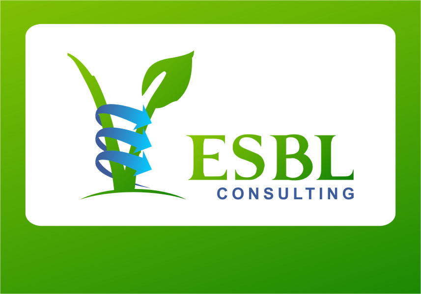 Logo Design by Ngepet_art - Entry No. 95 in the Logo Design Contest EBSL Consulting Logo Design.