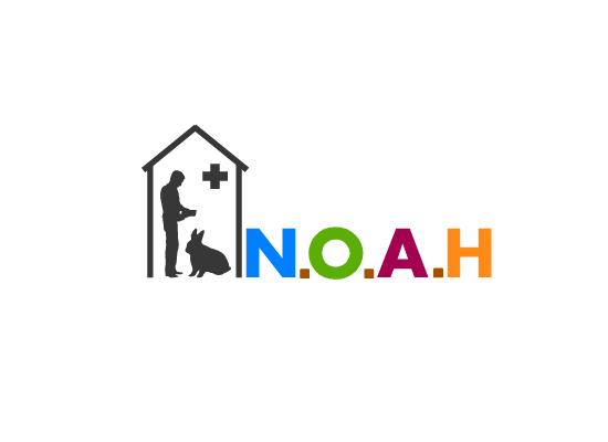 Logo Design by Ismail Adhi Wibowo - Entry No. 3 in the Logo Design Contest Fun Logo Design for N.O.A.H..