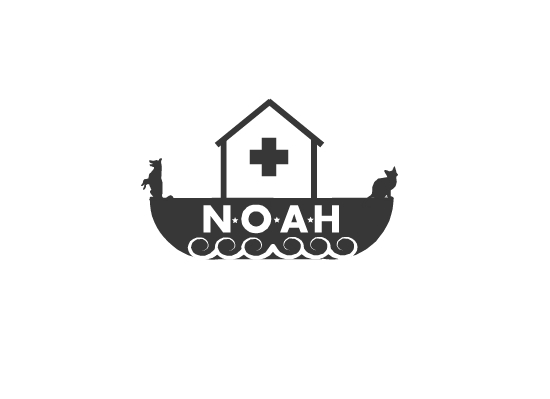 Logo Design by Ismail Adhi Wibowo - Entry No. 8 in the Logo Design Contest Fun Logo Design for N.O.A.H..