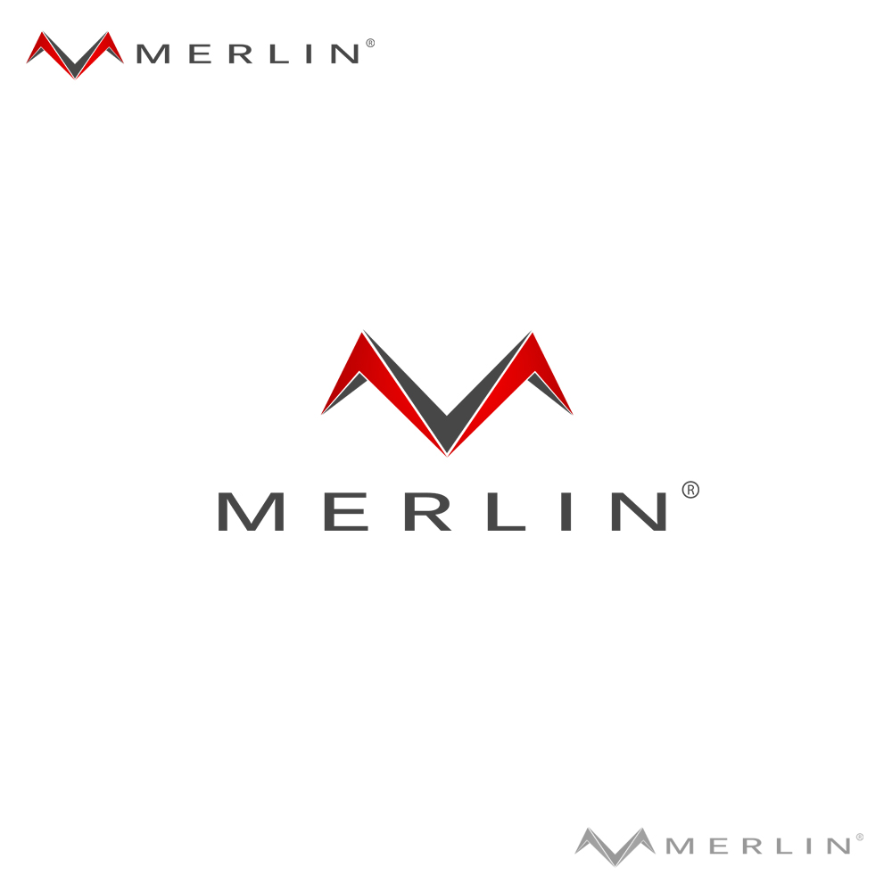 Logo Design by omARTist - Entry No. 5 in the Logo Design Contest Imaginative Logo Design for Merlin.