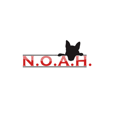 Logo Design by Crystal Desizns - Entry No. 26 in the Logo Design Contest Fun Logo Design for N.O.A.H..