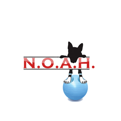 Logo Design by Crystal Desizns - Entry No. 27 in the Logo Design Contest Fun Logo Design for N.O.A.H..