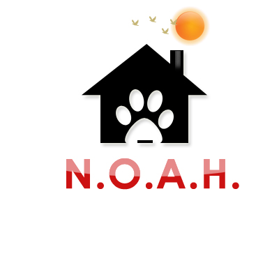 Logo Design by Crystal Desizns - Entry No. 30 in the Logo Design Contest Fun Logo Design for N.O.A.H..