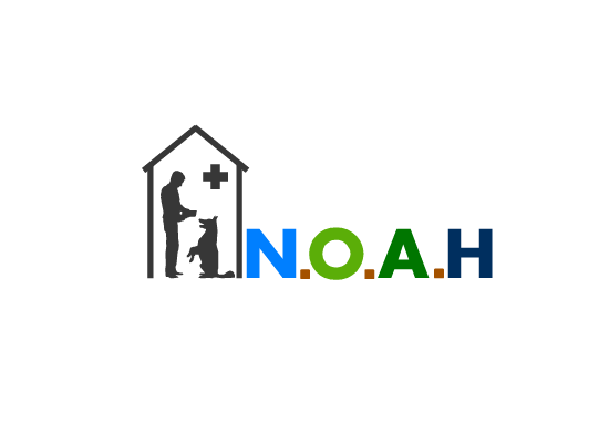 Logo Design by Ismail Adhi Wibowo - Entry No. 48 in the Logo Design Contest Fun Logo Design for N.O.A.H..