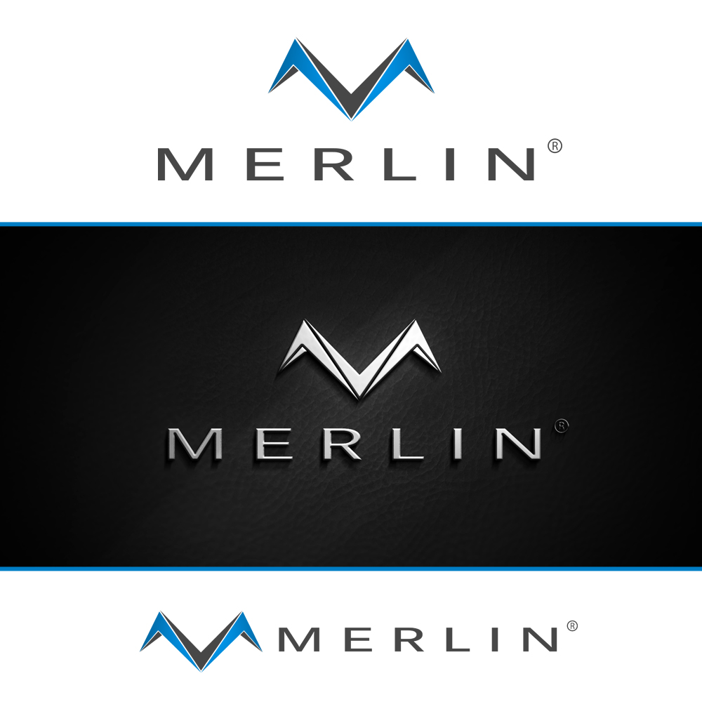 Logo Design by omARTist - Entry No. 58 in the Logo Design Contest Imaginative Logo Design for Merlin.