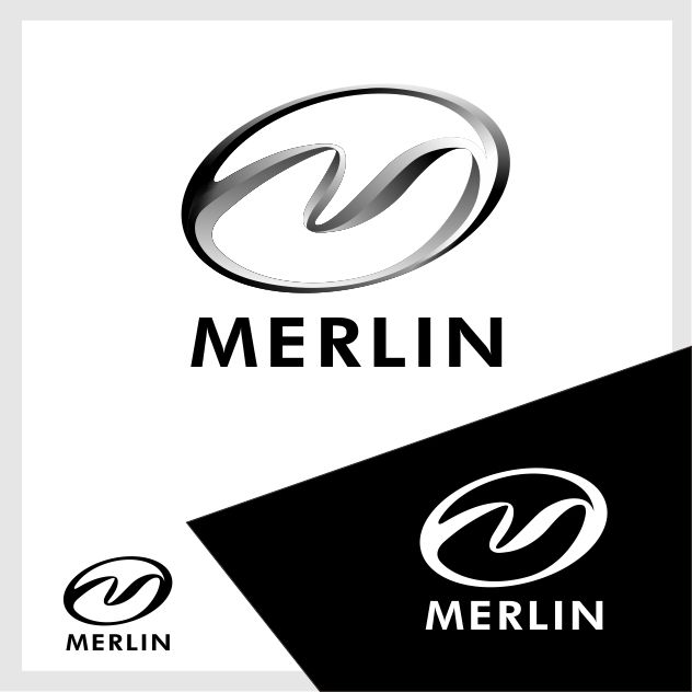 Logo Design by brown_hair - Entry No. 59 in the Logo Design Contest Imaginative Logo Design for Merlin.