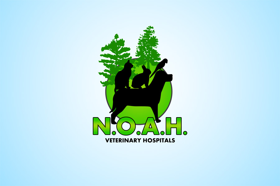 Logo Design by Private User - Entry No. 67 in the Logo Design Contest Fun Logo Design for N.O.A.H..