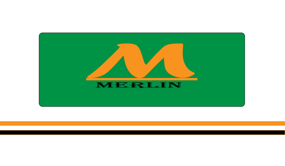 Logo Design by Batang Yagit - Entry No. 126 in the Logo Design Contest Imaginative Logo Design for Merlin.