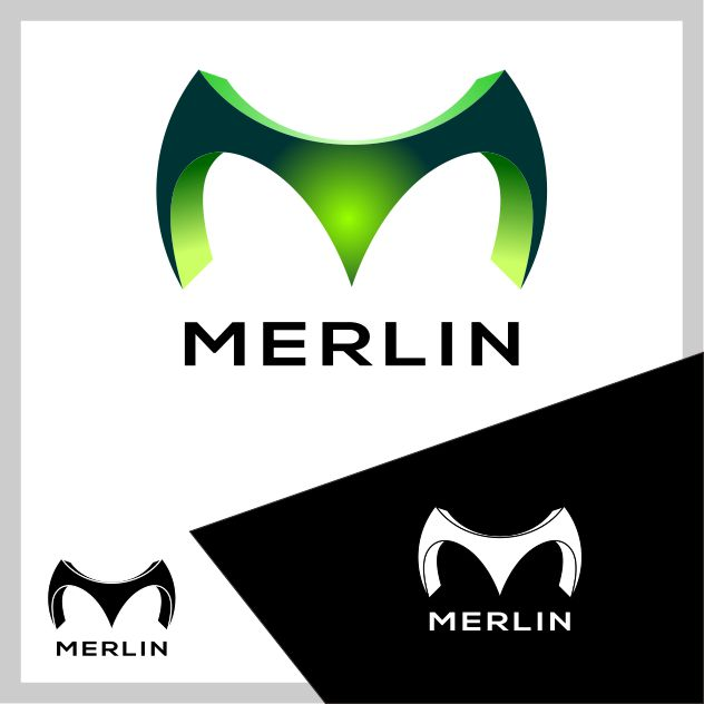 Logo Design by brown_hair - Entry No. 150 in the Logo Design Contest Imaginative Logo Design for Merlin.