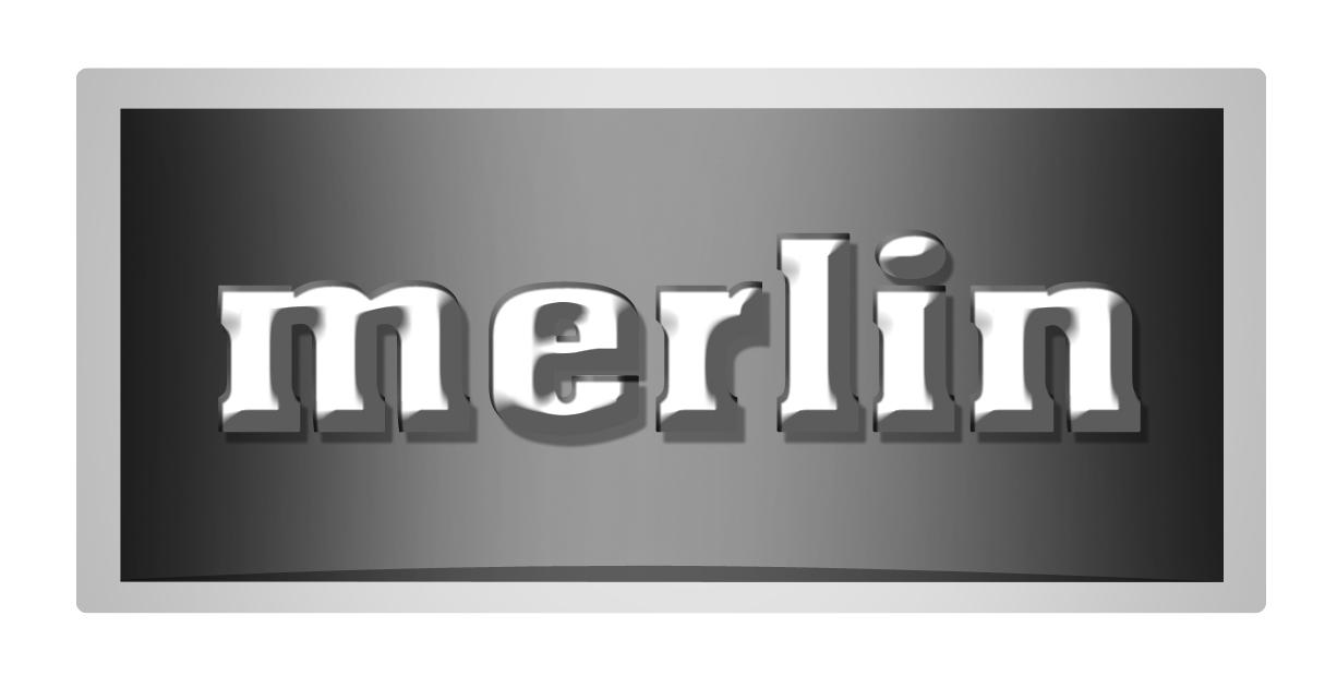 Logo Design by Shailender Kumar - Entry No. 157 in the Logo Design Contest Imaginative Logo Design for Merlin.