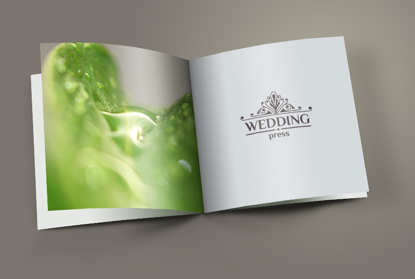 Logo Design by Levan Lomidze - Entry No. 80 in the Logo Design Contest Wedding Writes Logo Design.