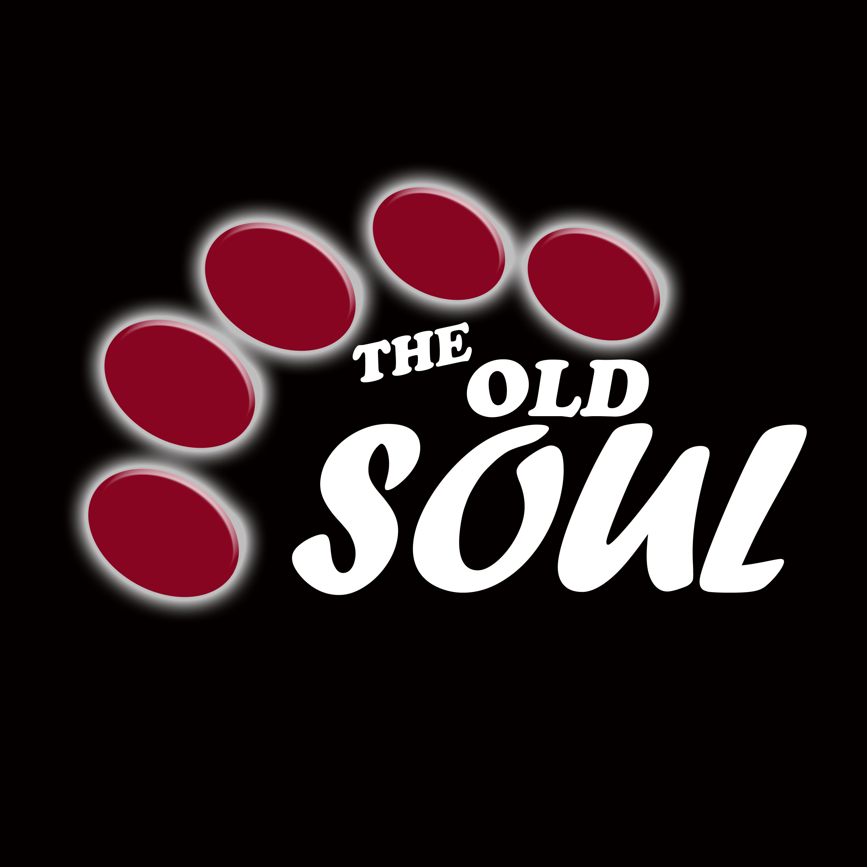 Logo Design by Roberto Sibbaluca - Entry No. 46 in the Logo Design Contest Unique Logo Design Wanted for Old Soul.