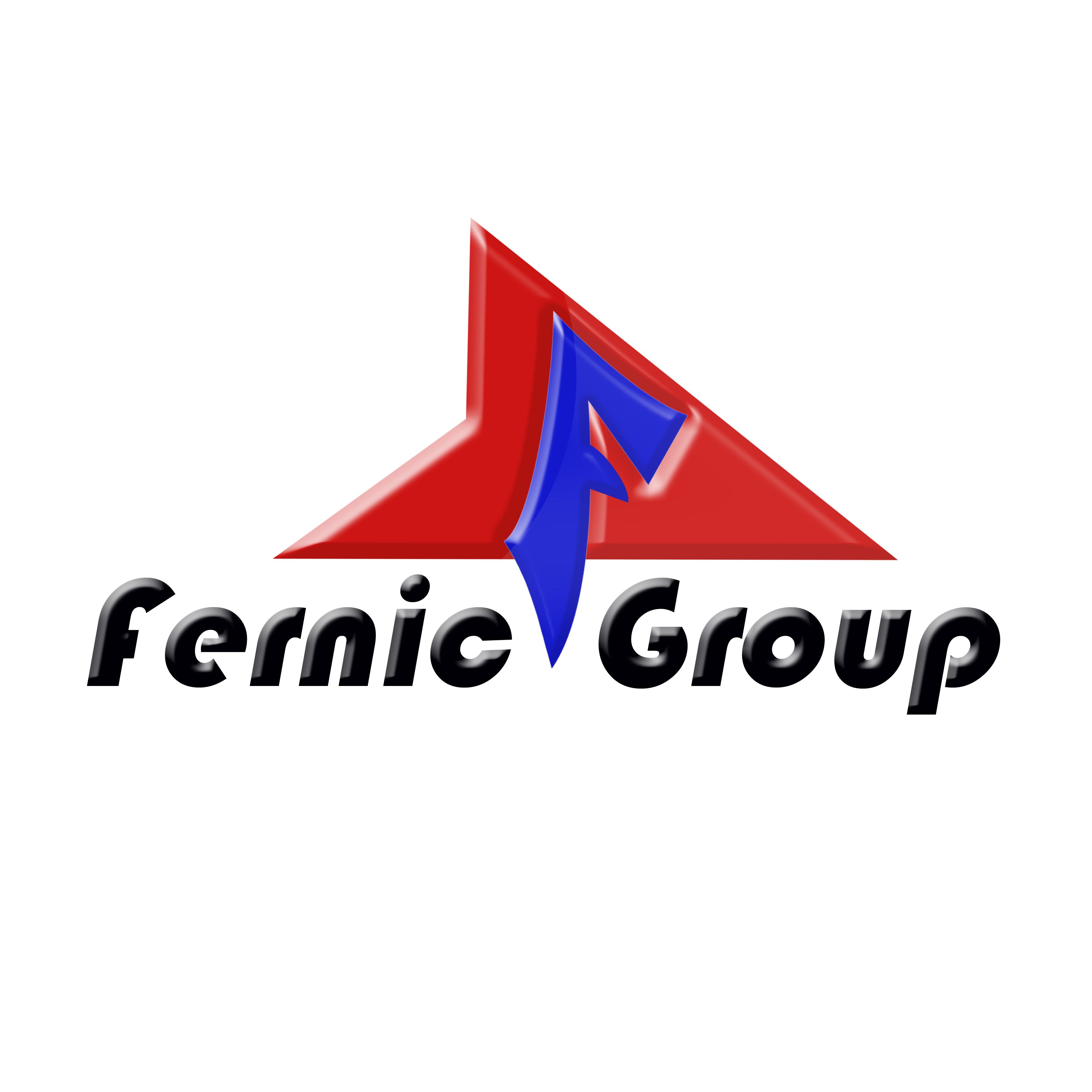 Logo Design by Roberto Sibbaluca - Entry No. 23 in the Logo Design Contest Artistic Logo Design for Fernic Goup.
