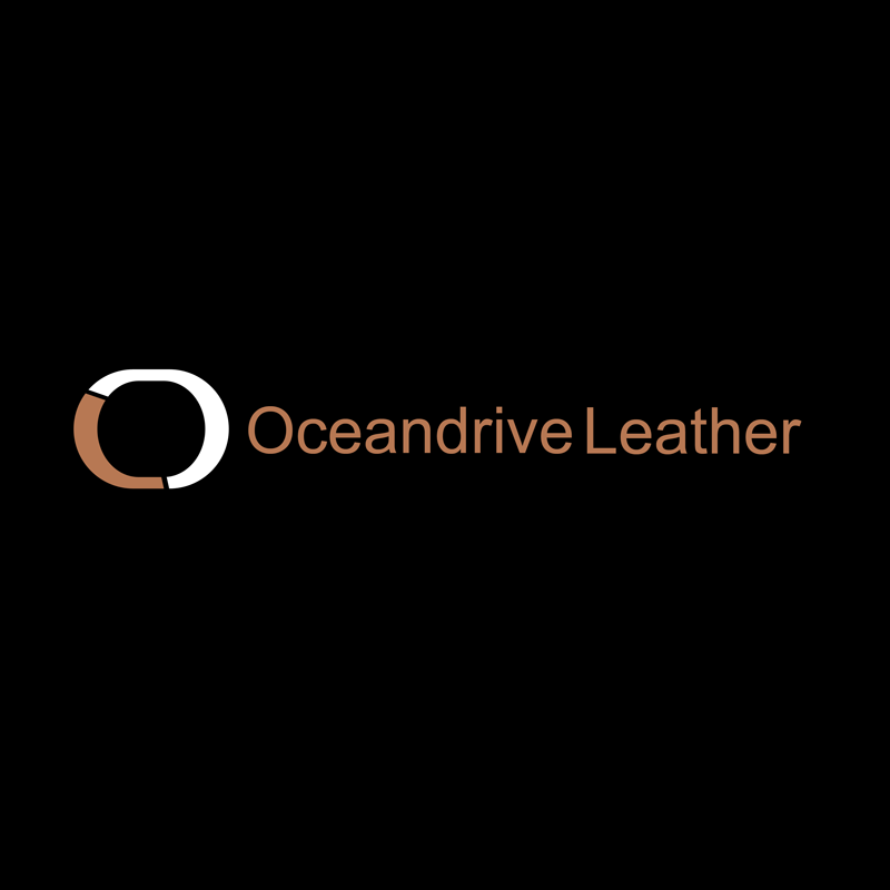 Logo Design by Private User - Entry No. 63 in the Logo Design Contest Captivating Logo Design for Oceandrive Leather.