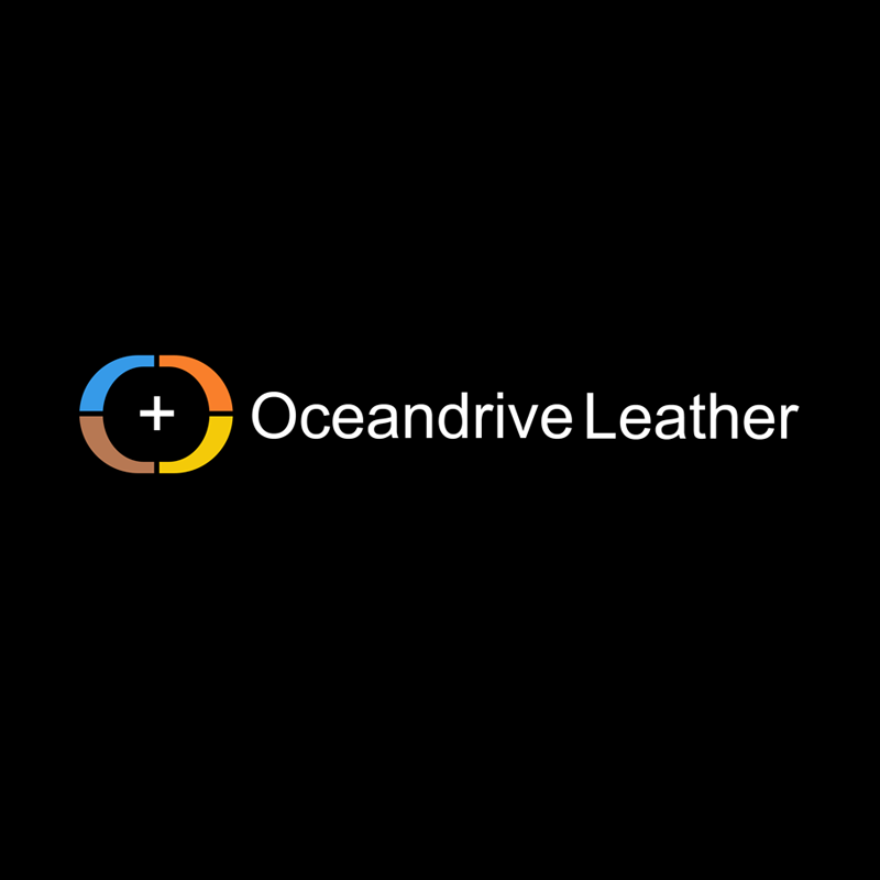 Logo Design by Private User - Entry No. 64 in the Logo Design Contest Captivating Logo Design for Oceandrive Leather.