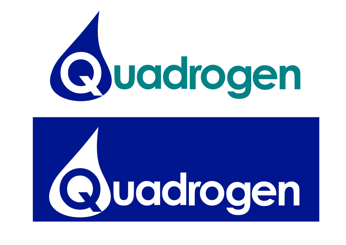 Logo Design by Heri Susanto - Entry No. 36 in the Logo Design Contest New Logo Design for Quadrogen Power Systems, Inc.