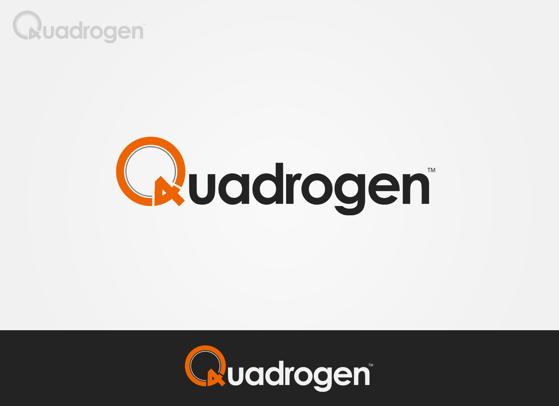 Logo Design by omARTist - Entry No. 54 in the Logo Design Contest New Logo Design for Quadrogen Power Systems, Inc.