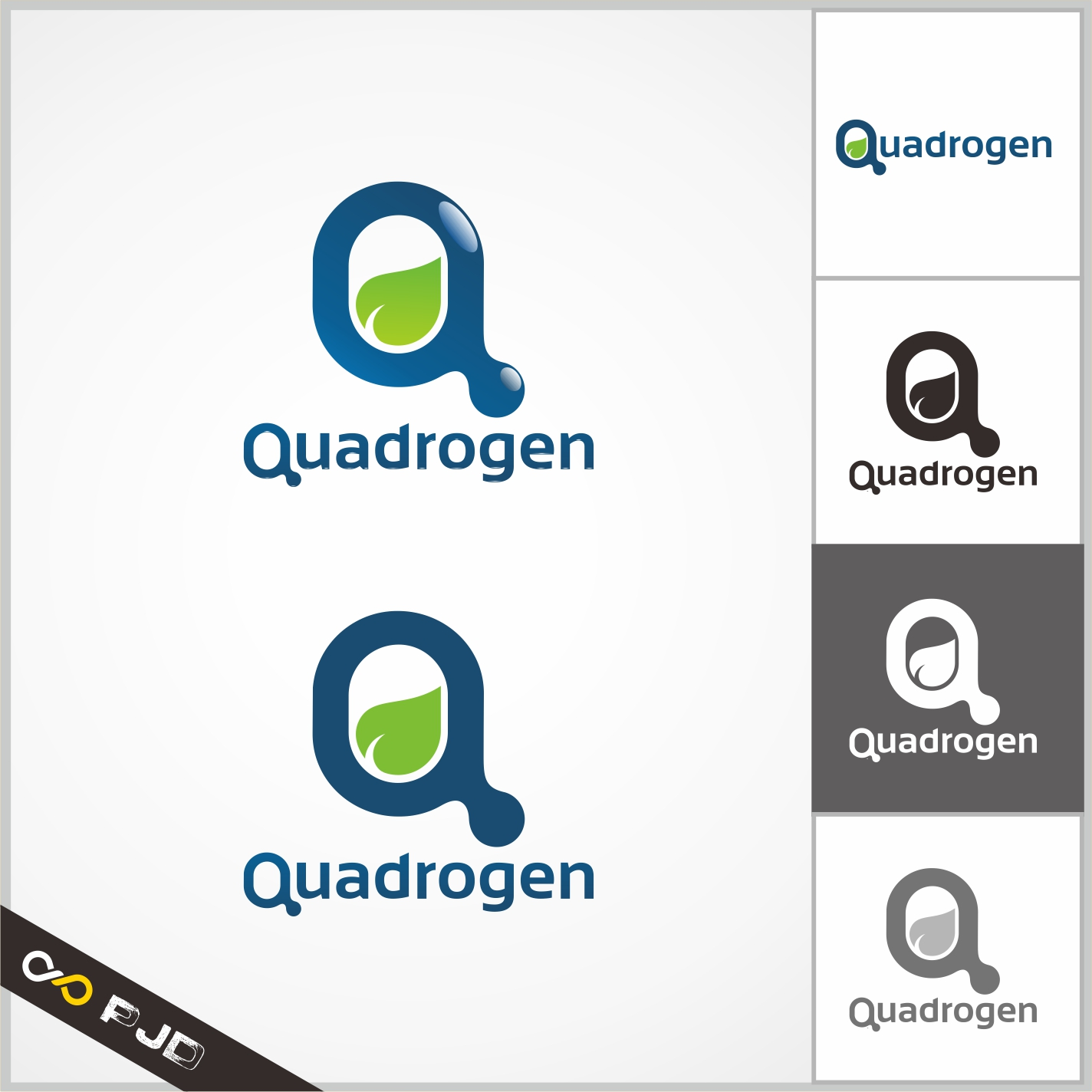 Logo Design by PJD - Entry No. 63 in the Logo Design Contest New Logo Design for Quadrogen Power Systems, Inc.