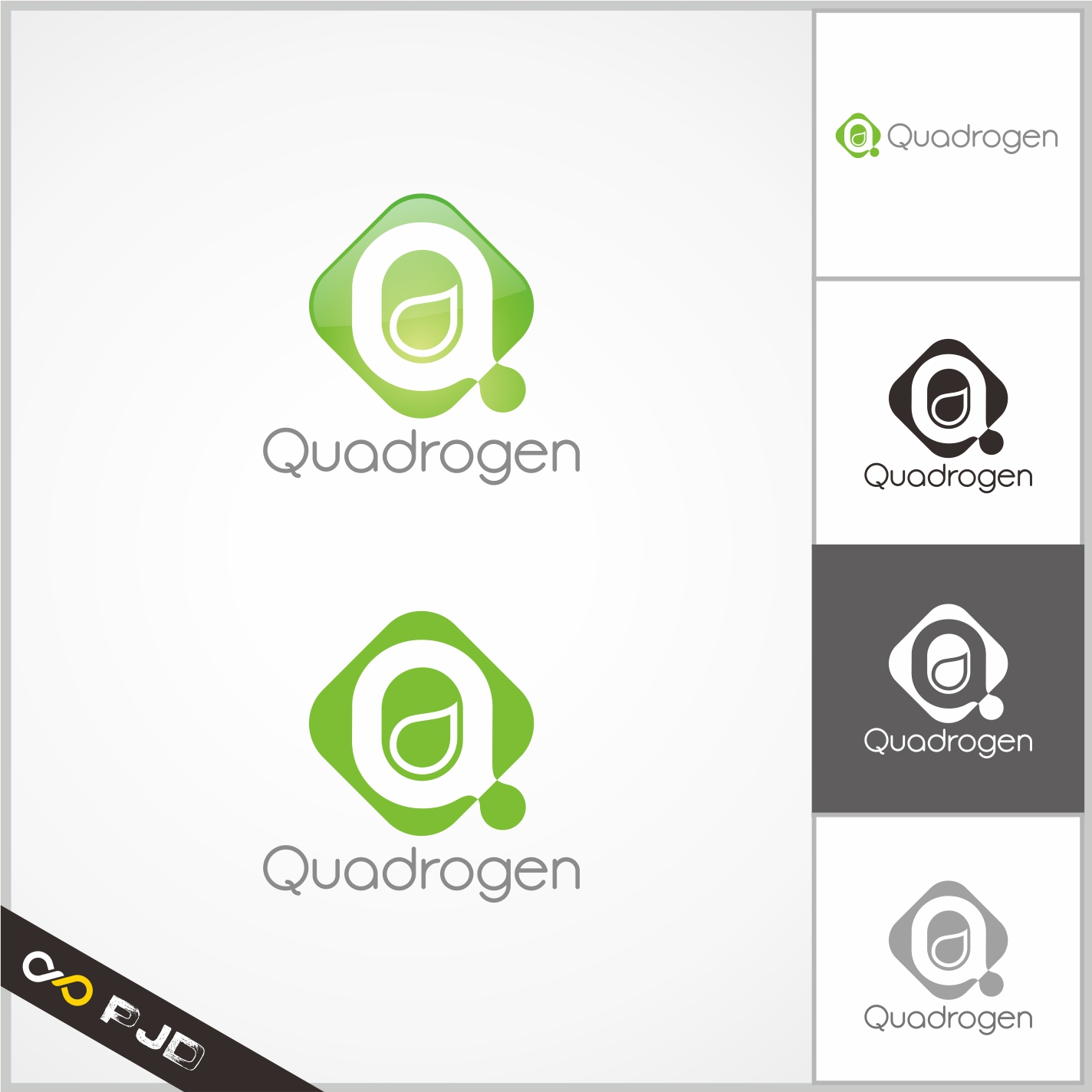 Logo Design by PJD - Entry No. 68 in the Logo Design Contest New Logo Design for Quadrogen Power Systems, Inc.
