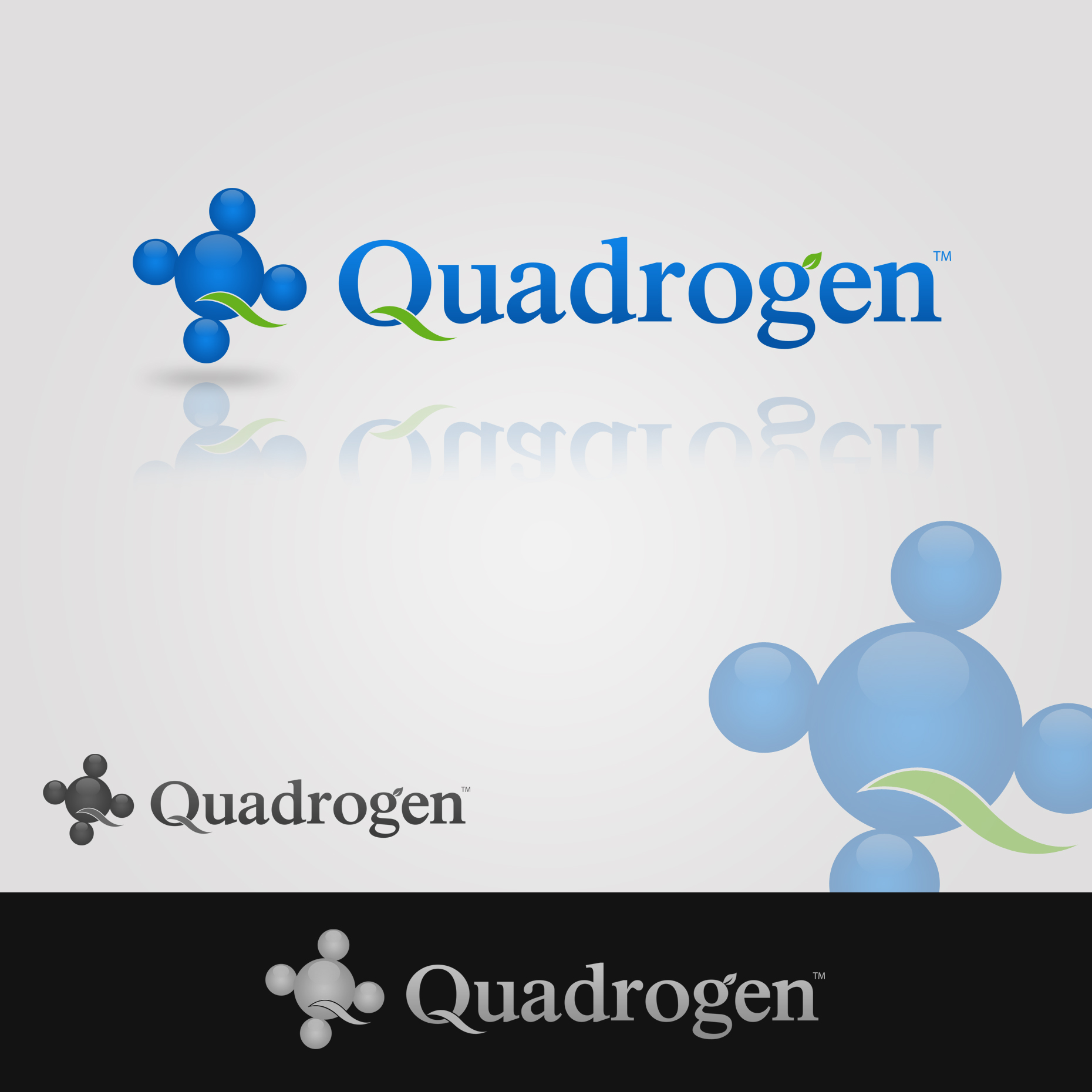 Logo Design by omARTist - Entry No. 162 in the Logo Design Contest New Logo Design for Quadrogen Power Systems, Inc.