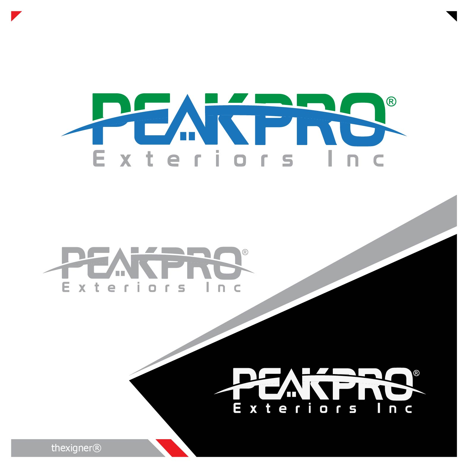 Logo Design by lagalag - Entry No. 2 in the Logo Design Contest Captivating Logo Design for Peakpro Exteriors Inc..