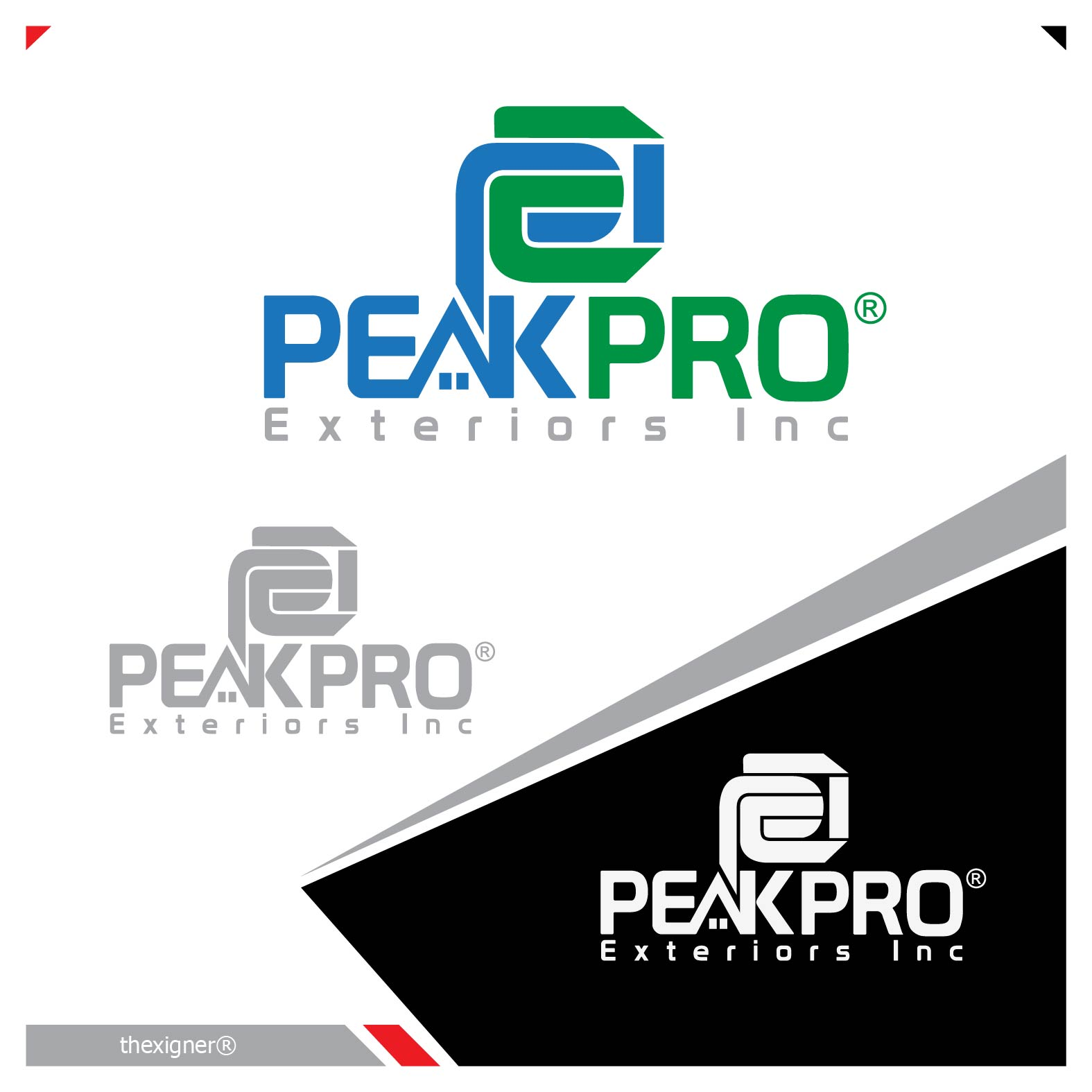 Logo Design by lagalag - Entry No. 5 in the Logo Design Contest Captivating Logo Design for Peakpro Exteriors Inc..