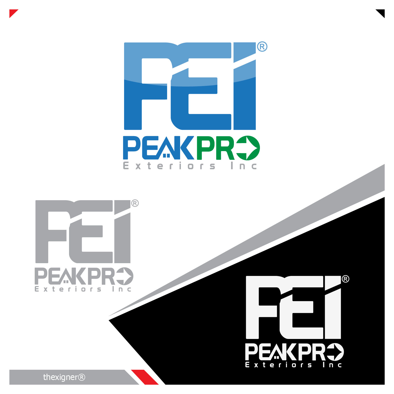 Logo Design by lagalag - Entry No. 10 in the Logo Design Contest Captivating Logo Design for Peakpro Exteriors Inc..