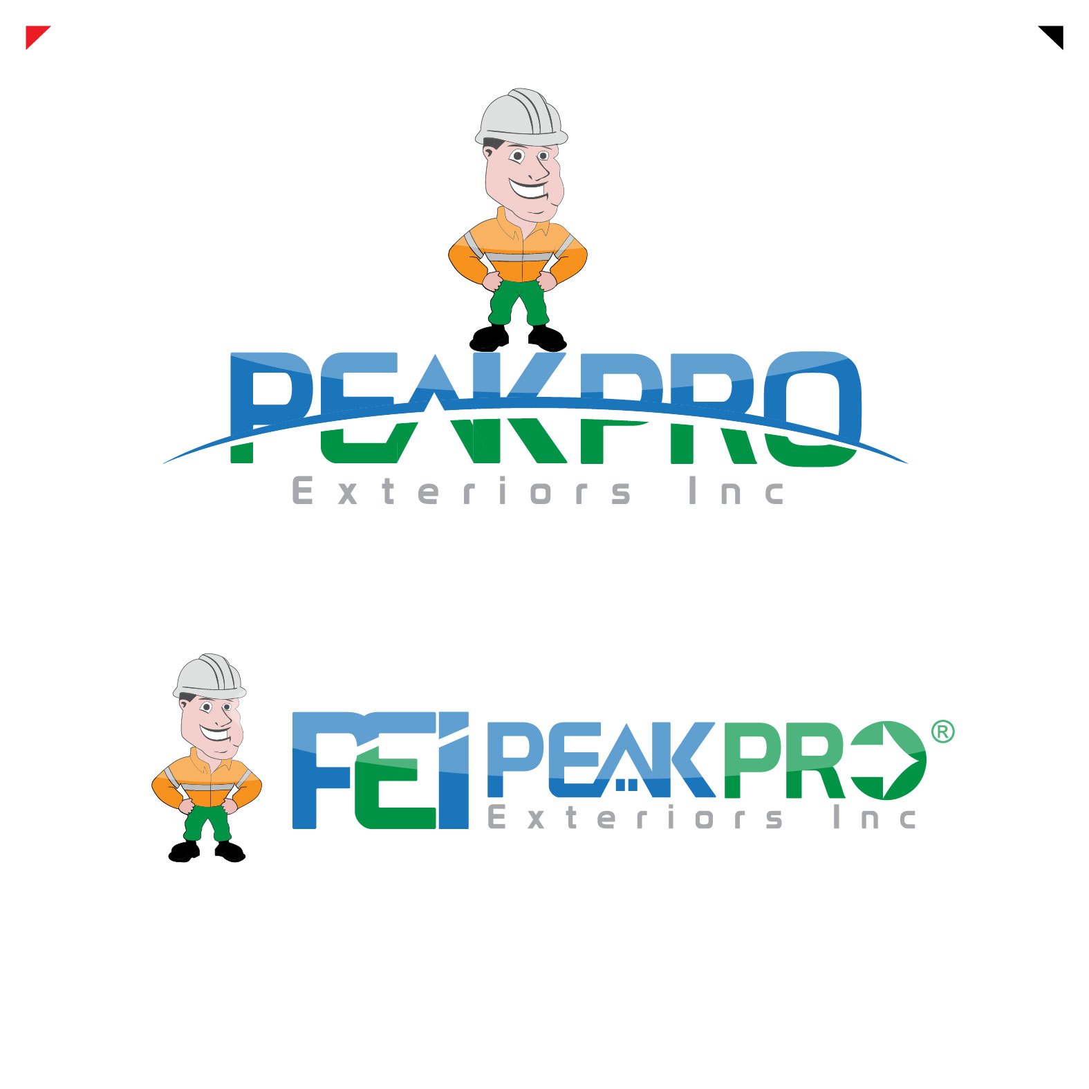 Logo Design by lagalag - Entry No. 53 in the Logo Design Contest Captivating Logo Design for Peakpro Exteriors Inc..