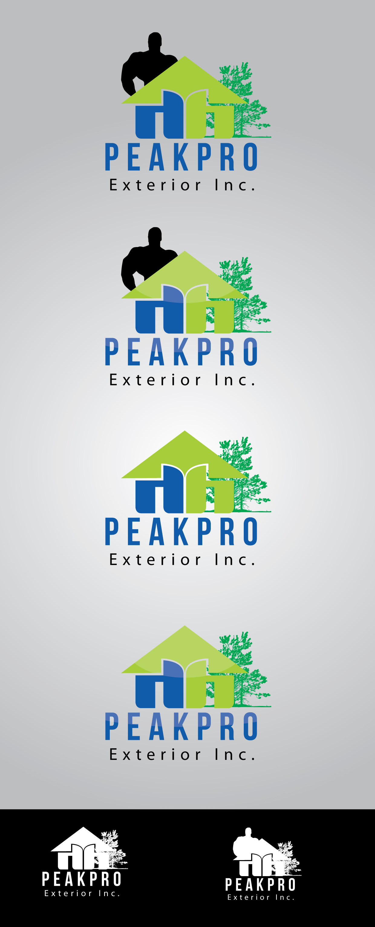 Logo Design by mediaproductionart - Entry No. 80 in the Logo Design Contest Captivating Logo Design for Peakpro Exteriors Inc..
