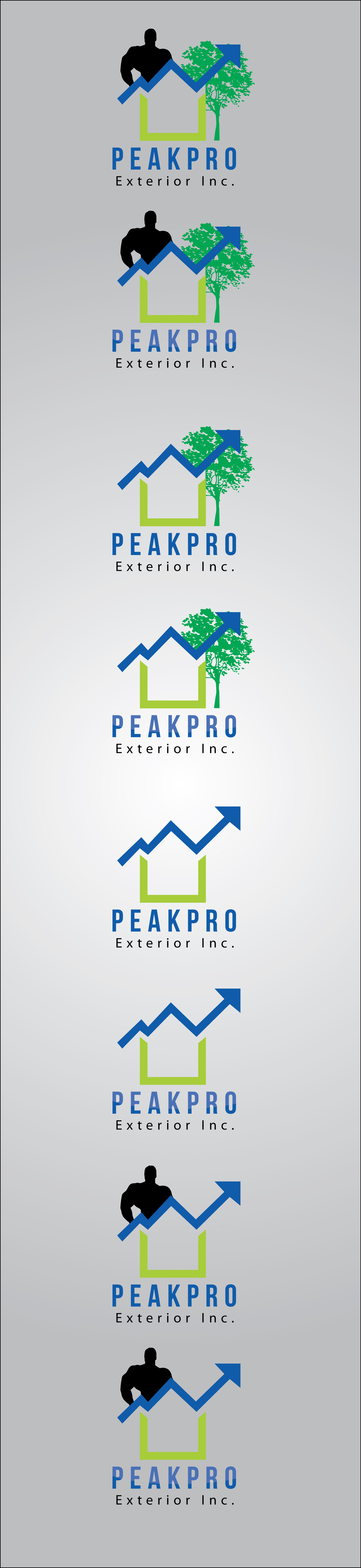 Logo Design by mediaproductionart - Entry No. 81 in the Logo Design Contest Captivating Logo Design for Peakpro Exteriors Inc..