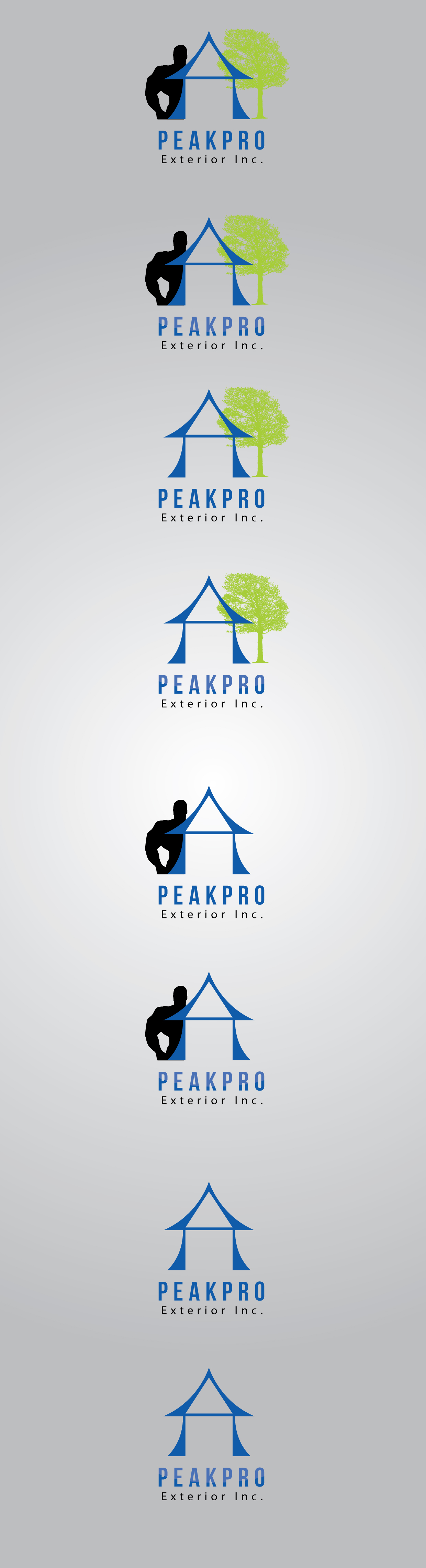 Logo Design by mediaproductionart - Entry No. 82 in the Logo Design Contest Captivating Logo Design for Peakpro Exteriors Inc..