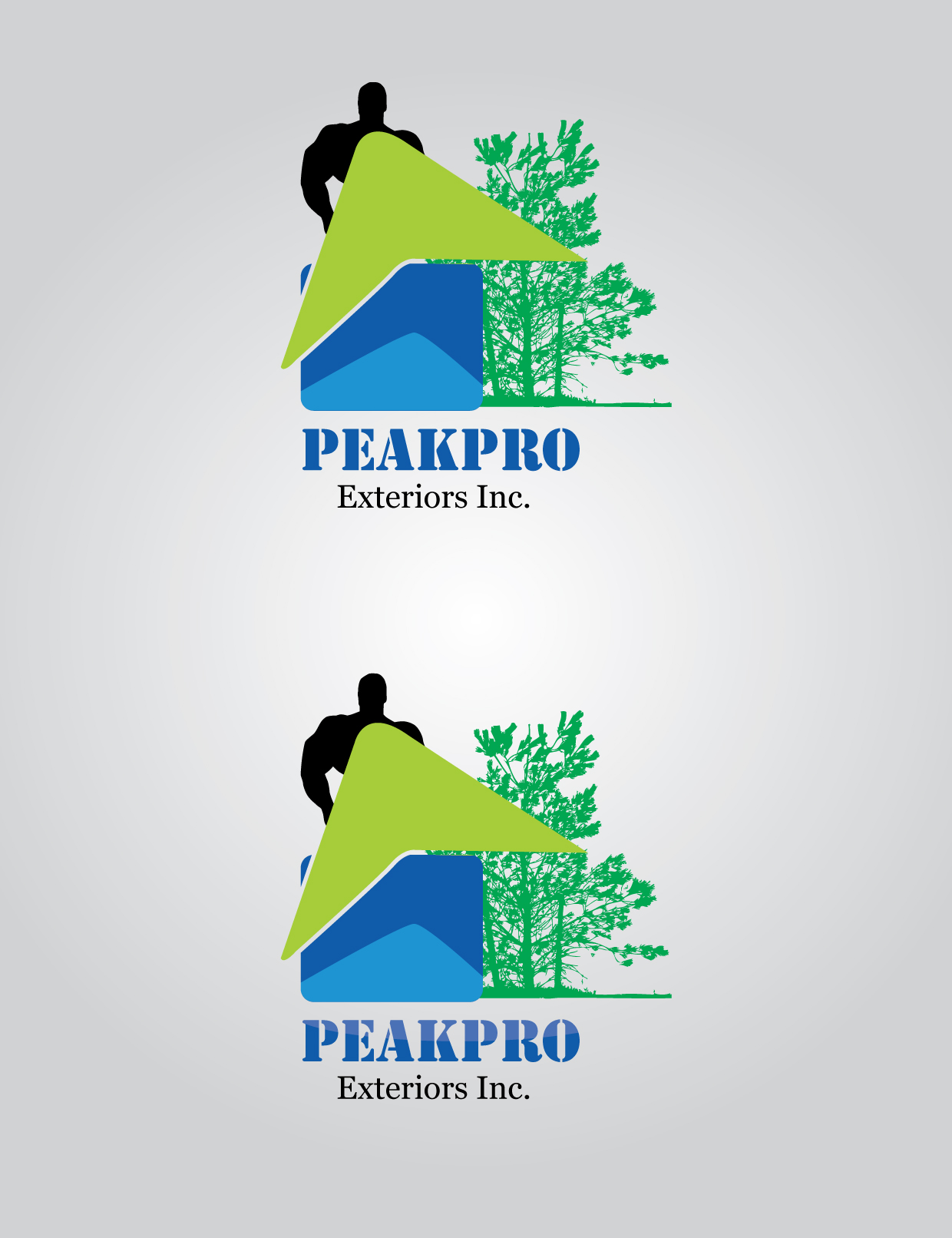 Logo Design by mediaproductionart - Entry No. 83 in the Logo Design Contest Captivating Logo Design for Peakpro Exteriors Inc..