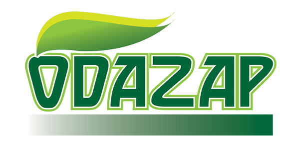Logo Design by Mohamed Sheikh - Entry No. 123 in the Logo Design Contest New Logo Design for ODAZAP.