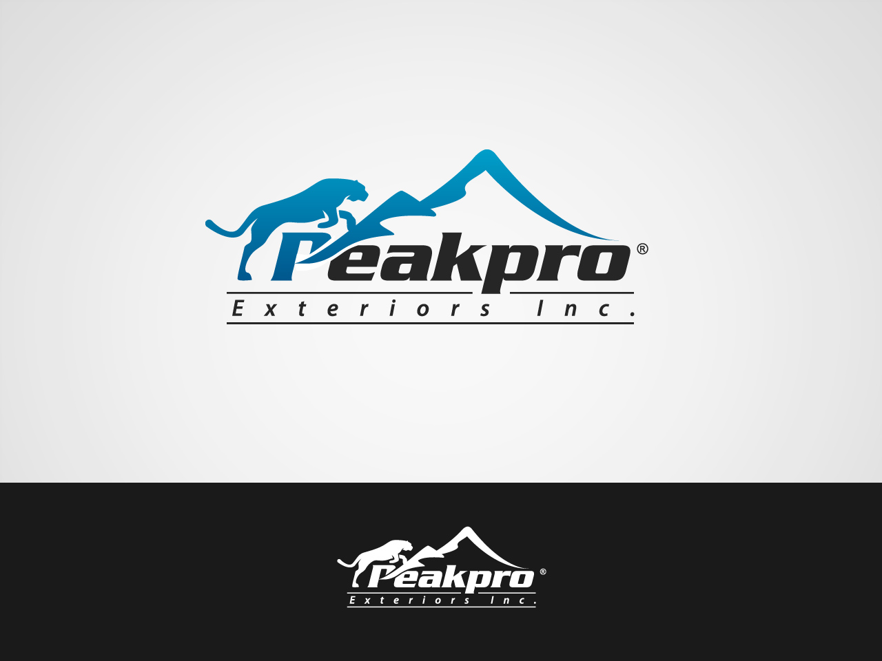 Logo Design by jpbituin - Entry No. 88 in the Logo Design Contest Captivating Logo Design for Peakpro Exteriors Inc..