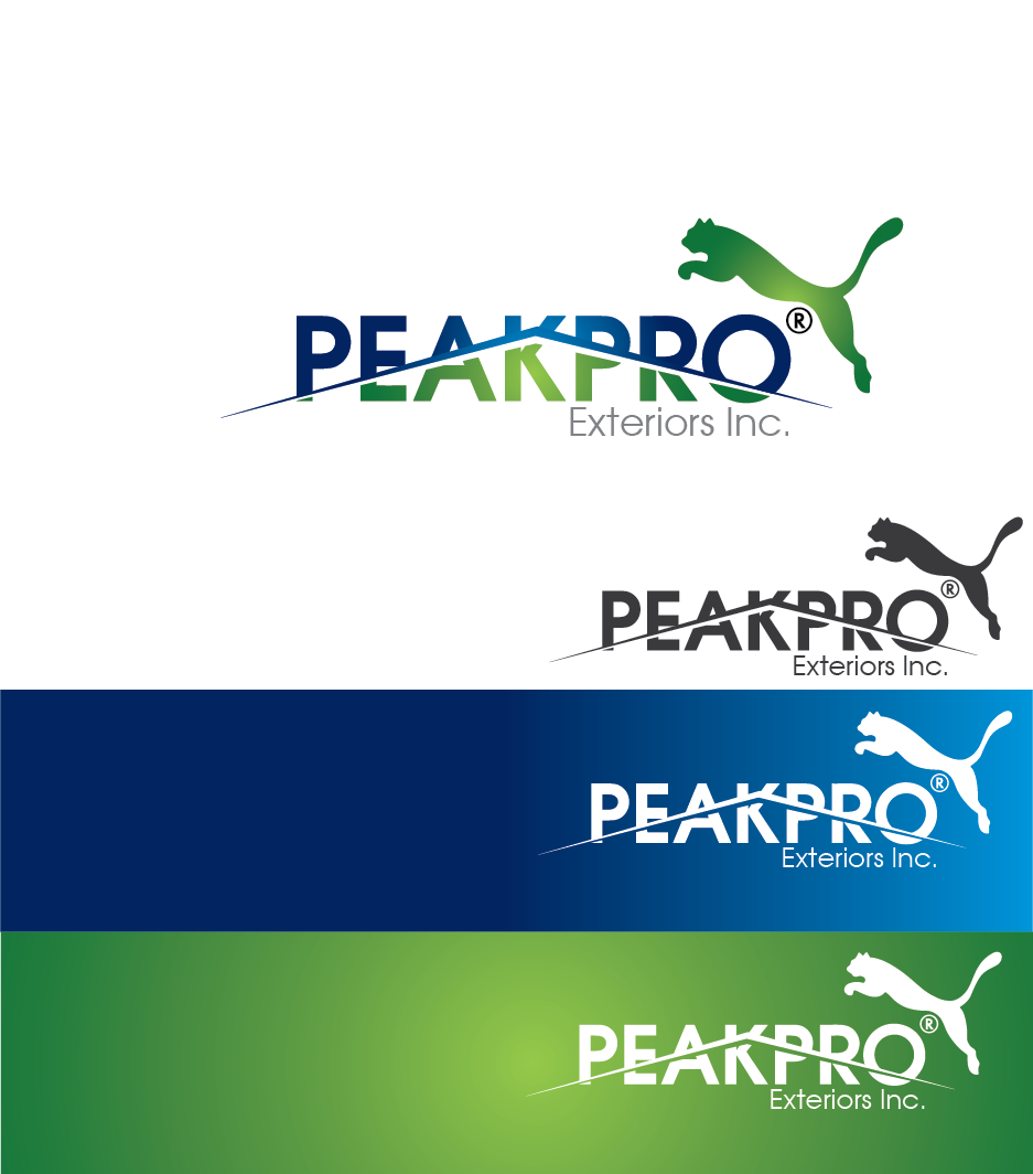 Logo Design by Private User - Entry No. 89 in the Logo Design Contest Captivating Logo Design for Peakpro Exteriors Inc..