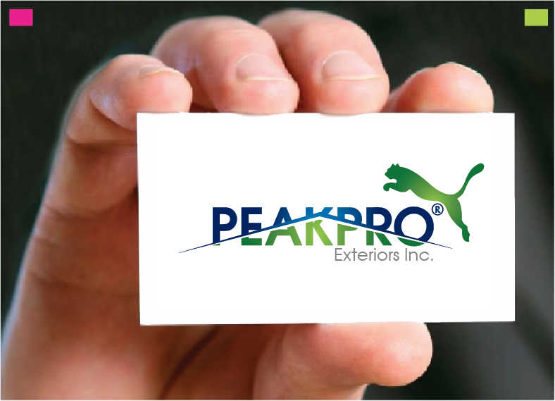 Logo Design by Private User - Entry No. 92 in the Logo Design Contest Captivating Logo Design for Peakpro Exteriors Inc..