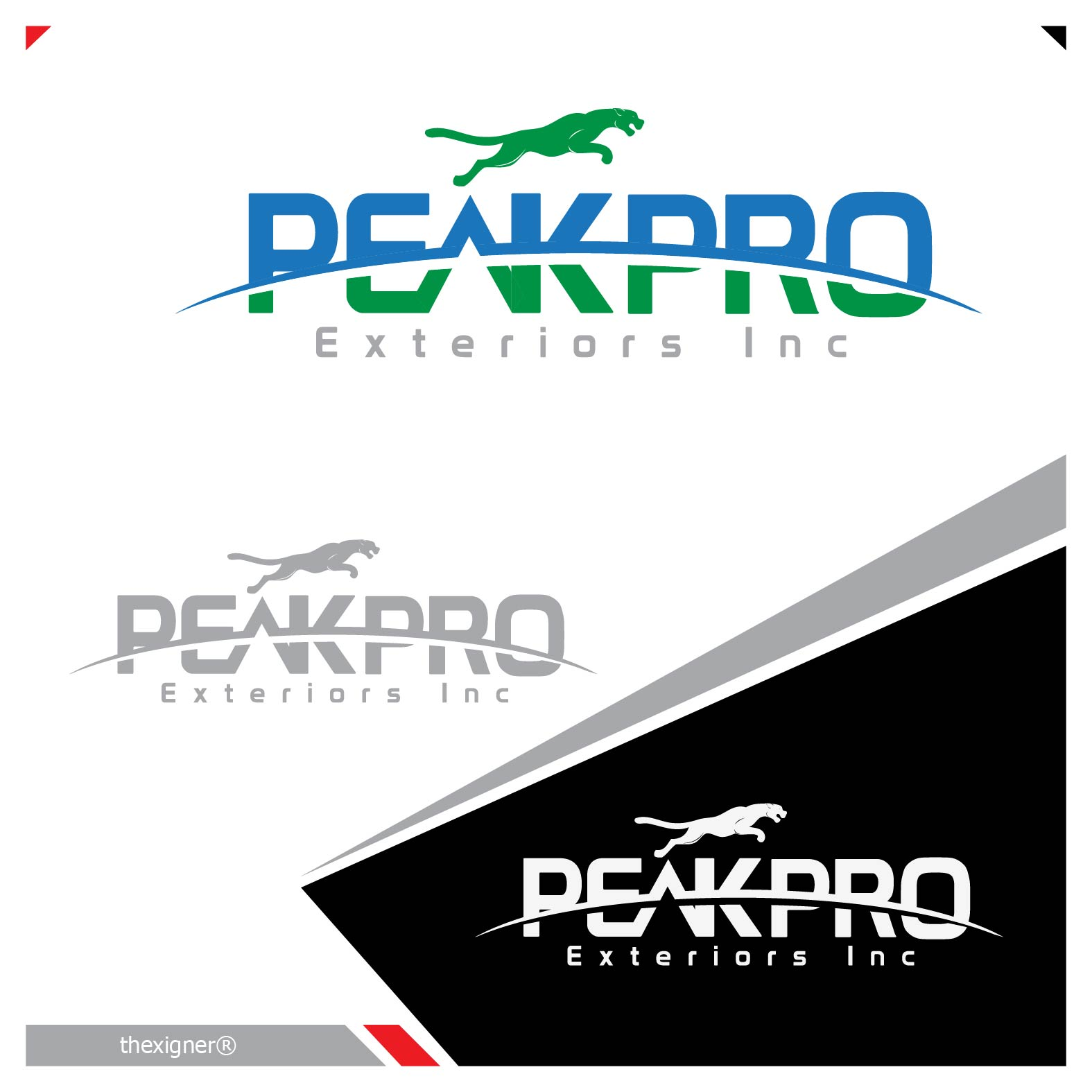 Logo Design by lagalag - Entry No. 93 in the Logo Design Contest Captivating Logo Design for Peakpro Exteriors Inc..