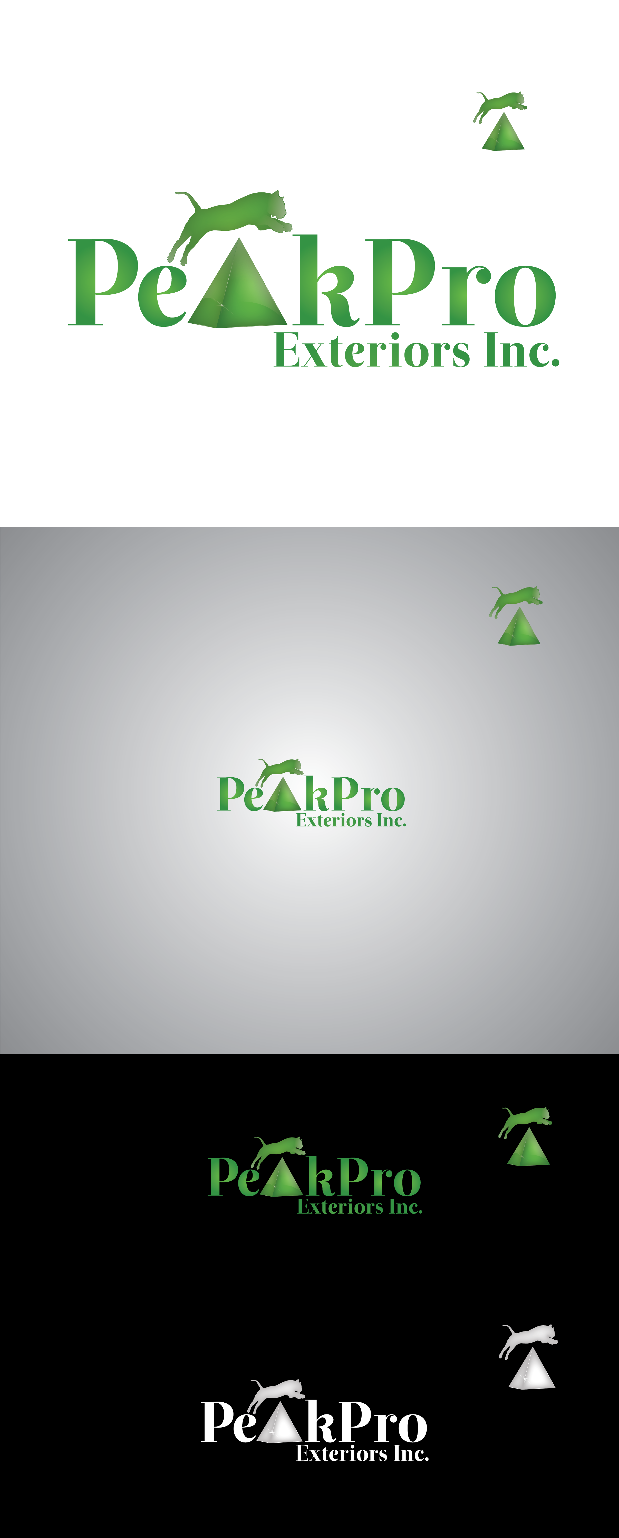 Logo Design by Private User - Entry No. 94 in the Logo Design Contest Captivating Logo Design for Peakpro Exteriors Inc..