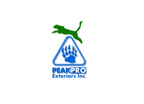 Logo Design by Ismail Adhi Wibowo - Entry No. 97 in the Logo Design Contest Captivating Logo Design for Peakpro Exteriors Inc..