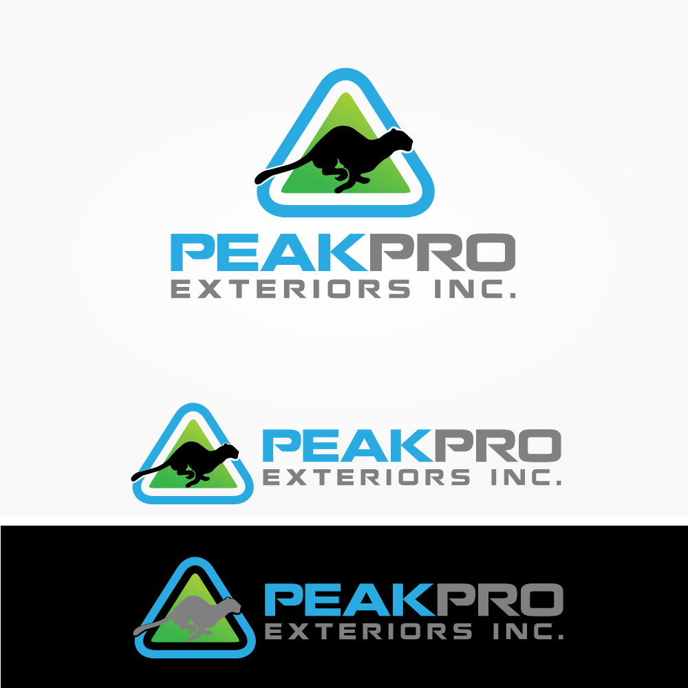 Logo Design by rockin - Entry No. 98 in the Logo Design Contest Captivating Logo Design for Peakpro Exteriors Inc..
