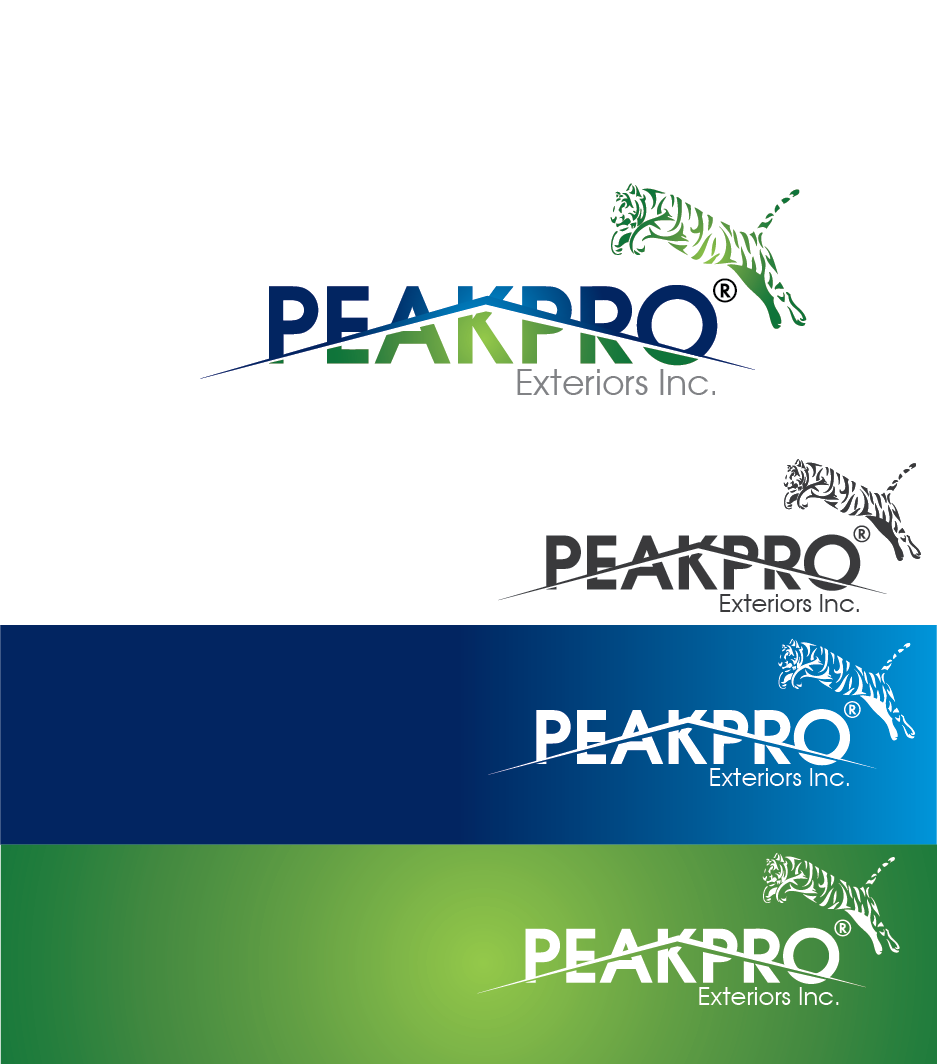 Logo Design by Private User - Entry No. 99 in the Logo Design Contest Captivating Logo Design for Peakpro Exteriors Inc..
