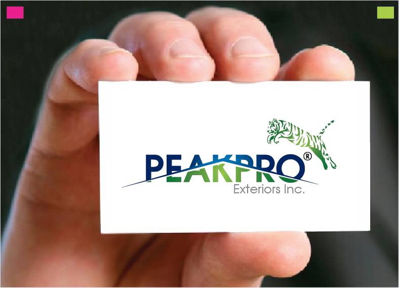 Logo Design by Private User - Entry No. 101 in the Logo Design Contest Captivating Logo Design for Peakpro Exteriors Inc..