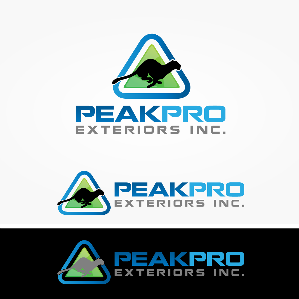 Logo Design by rockin - Entry No. 102 in the Logo Design Contest Captivating Logo Design for Peakpro Exteriors Inc..