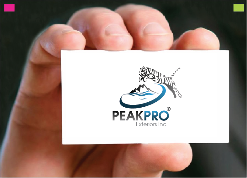 Logo Design by Private User - Entry No. 103 in the Logo Design Contest Captivating Logo Design for Peakpro Exteriors Inc..