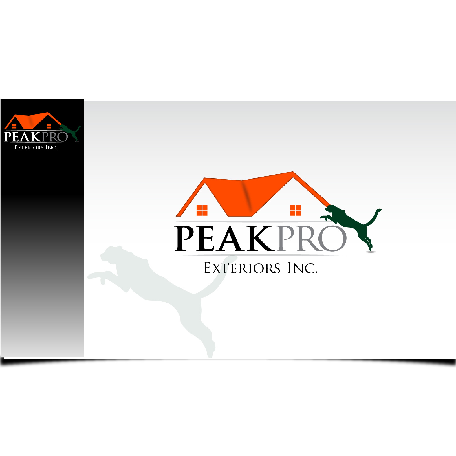 Logo Design by Robert Engi - Entry No. 113 in the Logo Design Contest Captivating Logo Design for Peakpro Exteriors Inc..