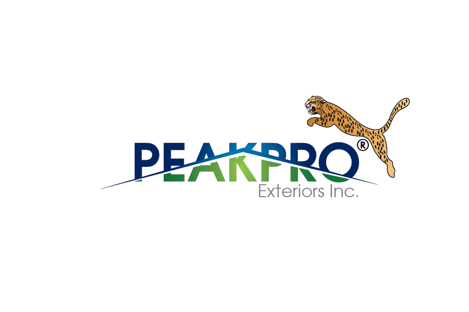 Logo Design by Private User - Entry No. 114 in the Logo Design Contest Captivating Logo Design for Peakpro Exteriors Inc..