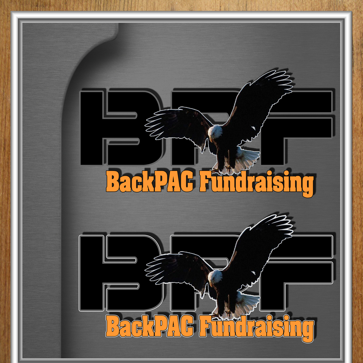 Logo Design by MITUCA ANDREI - Entry No. 82 in the Logo Design Contest Imaginative Logo Design for BackPAC Fundraising.
