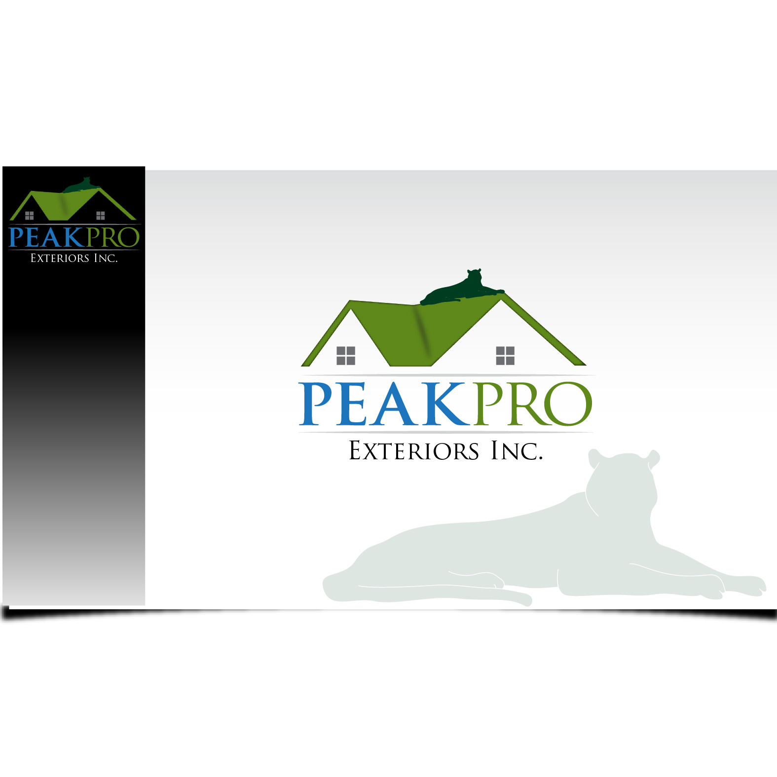 Logo Design by Robert Engi - Entry No. 141 in the Logo Design Contest Captivating Logo Design for Peakpro Exteriors Inc..