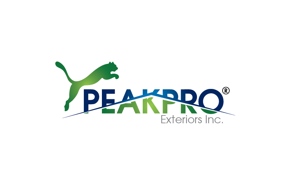 Logo Design by Private User - Entry No. 151 in the Logo Design Contest Captivating Logo Design for Peakpro Exteriors Inc..